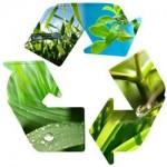 imaxe reciclaxe 2